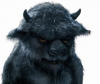 Dark Bison's Avatar